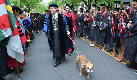 President Peter Salovey walked with Handsome Dan XVIII, who was attending his first Commencement as Yale's new mascot