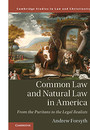 "Cover of the book titled ""Common Law and Natural Law in America."""