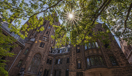 Sun breaking through the trees near Bingham Hall on Yale's Old Campus