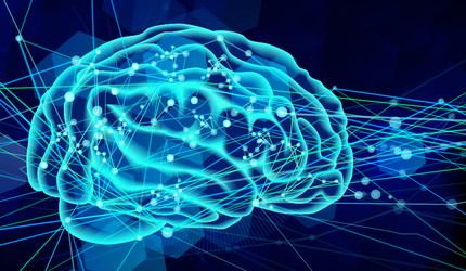 A stock image representing the human brain.