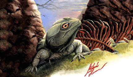 An artist's rendering of the prehistoric lizard Colobops noviportensis