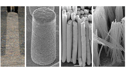 Silver nanorods made with thermomechanical molding.