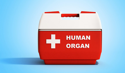 A cooler with 'Human Organ' written on it