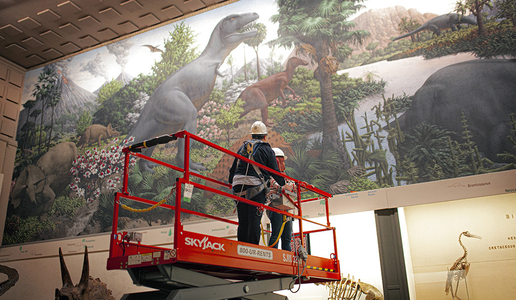 """Art conservators assess the condition of """"The Age of Reptiles,"""" Rudolph F. Zallinger's iconic mural"""