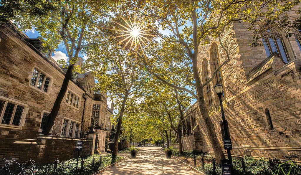 Sunny Yale campus walkway