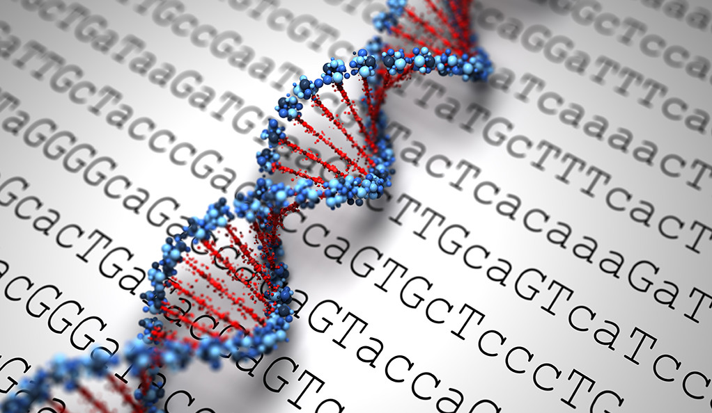 An illustrated strand of DNA laid over a grid of DNA base code.