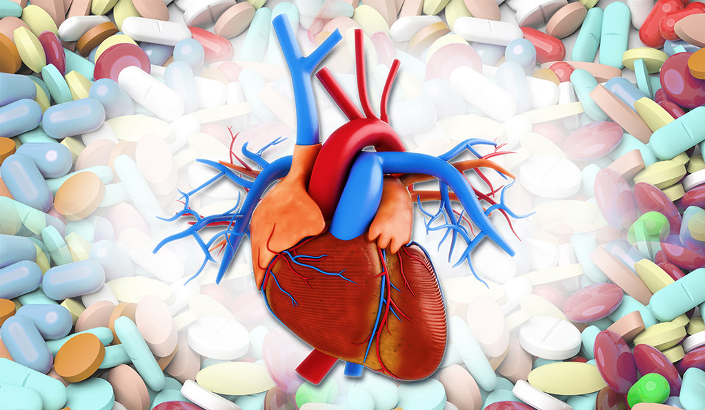 Illustration of a human heart.