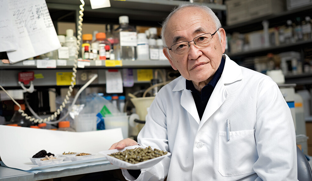 Ancient Chinese medicine unlocks new possibilities for cancer treatment |  YaleNews