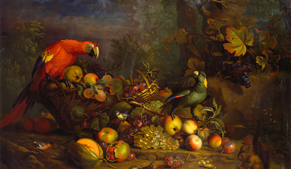"""Tobias Stranover's """"Parrots and Fruit with Other Birds and a Squirrel"""""""