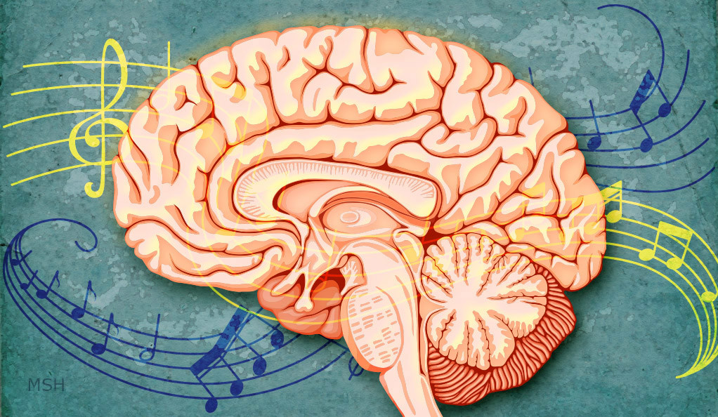 An illustration of music passing through a human brain. (Illustration by Michael S. Helfenbein)