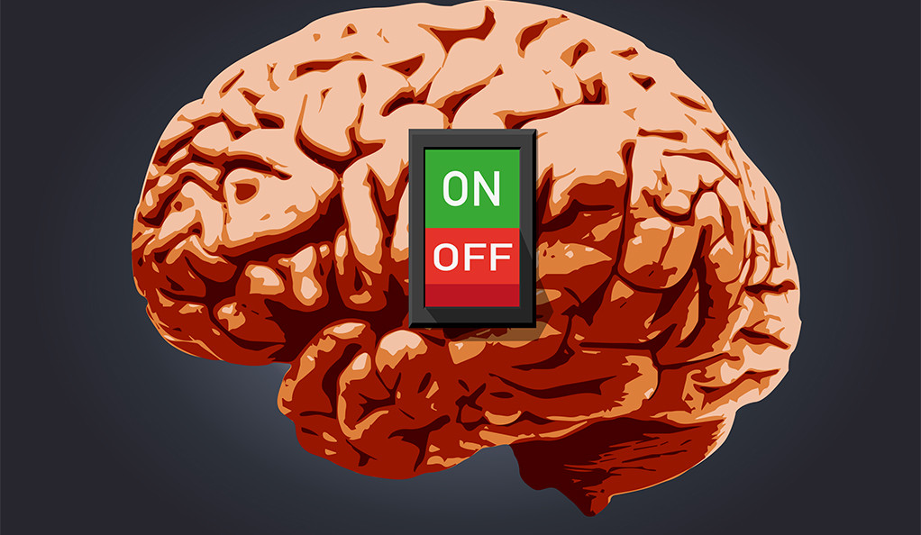 A human brain with an on/off switch switched to on.