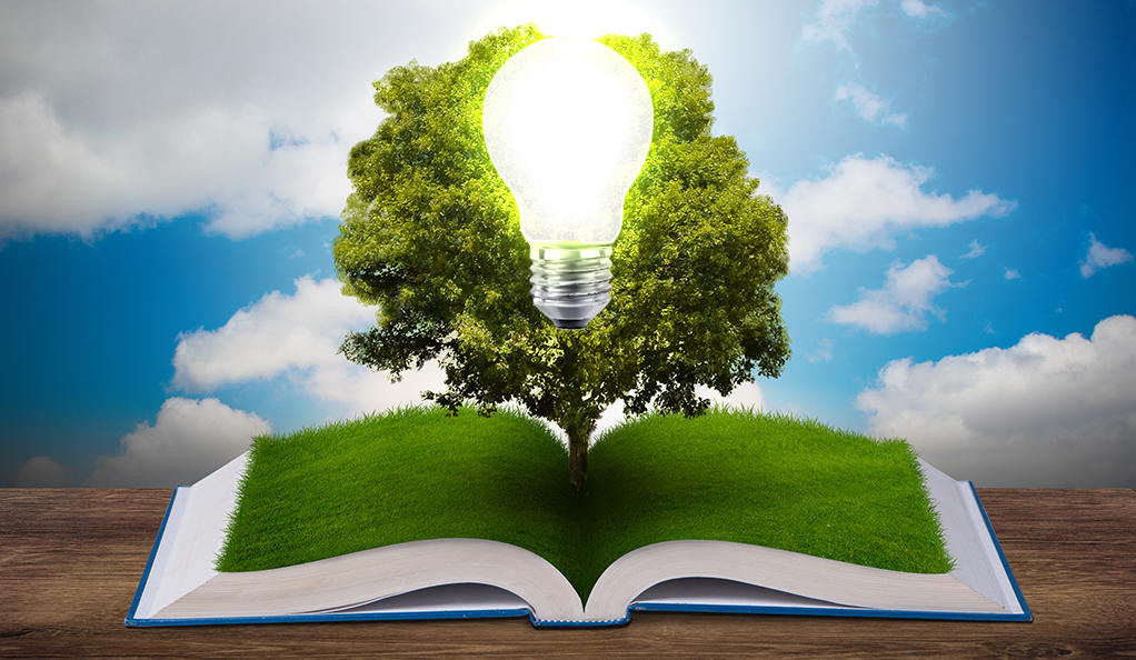 An illustration of a lightbulb and tree emerging from a book.