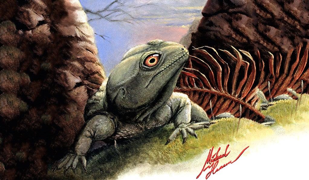 An artist's rendering of the prehistoric lizard Colobops noviportensis