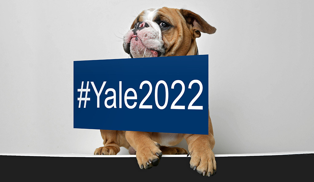 Handsome Dan holding a sign that says #Yale2022