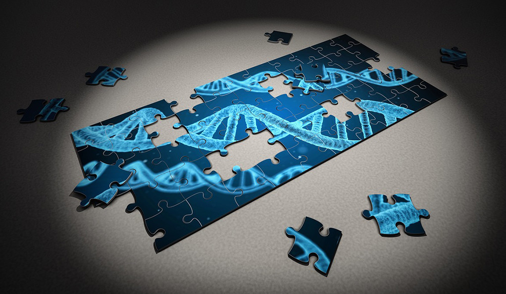 An incomplete jigsaw puzzle depicting a photo of DNA strands.