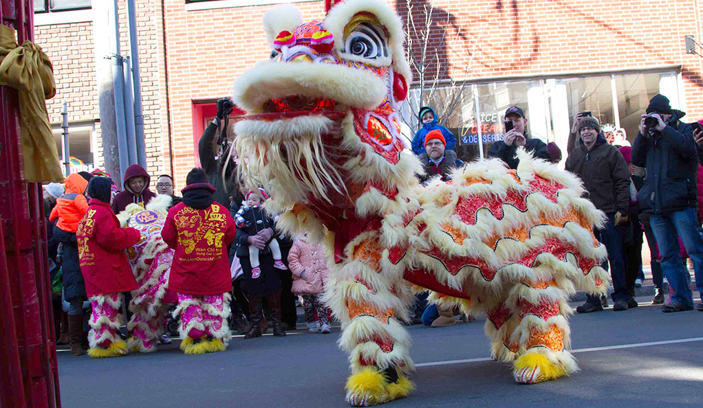 Street performers in a lion costume celebrate the Chinese new year.
