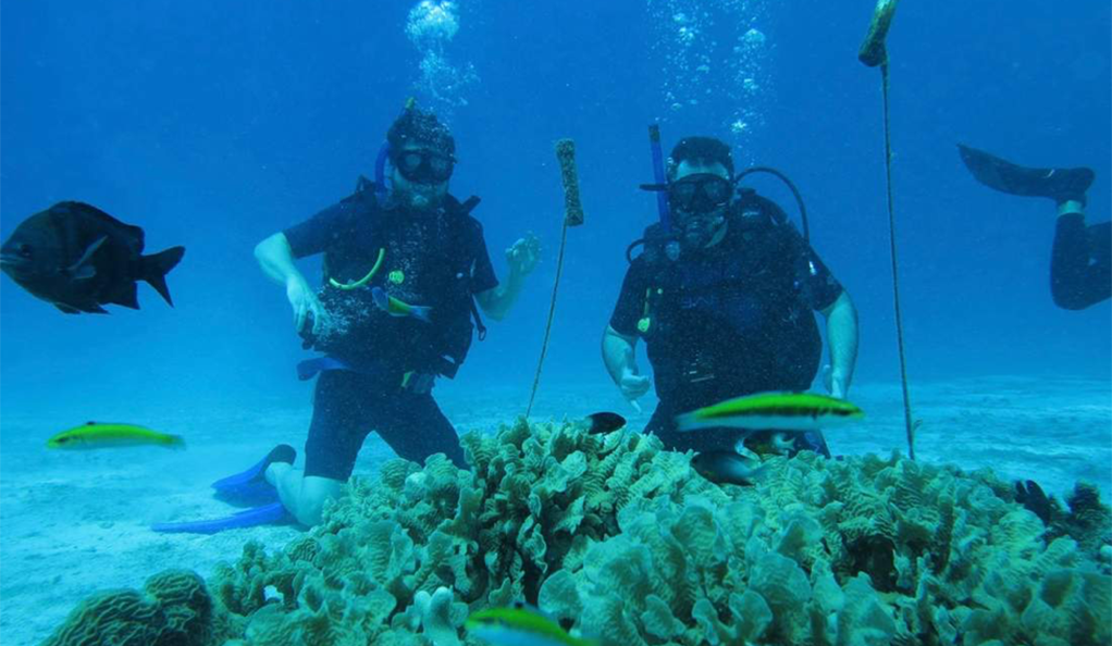 Coral Vita founders Gator Halpern and Sam Teicher posing in scuba gear underwater, at a coral reef.