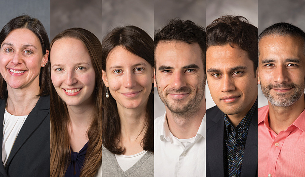 Six Helmsley Postdoctoral Teaching Scholars