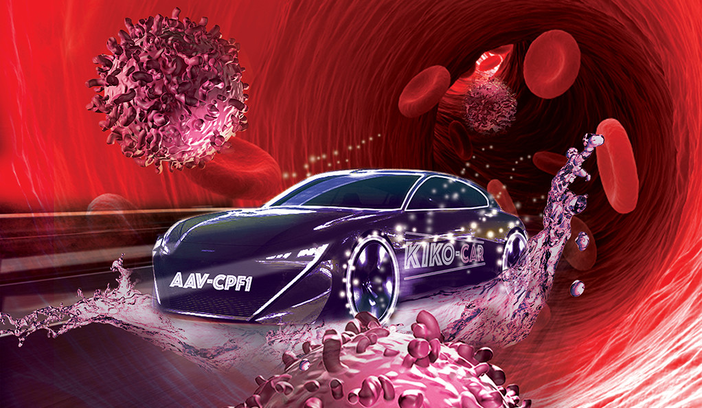 An illustration of a racecar with immune cells in a human bloodstream.