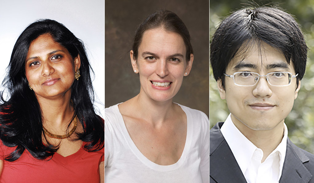 Priyamvada Natarajan, Kate Baldwin, and Taisu Zhang