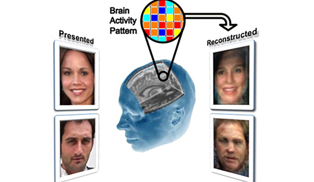 Diagram showing facial reconstruction using brain activity readings.