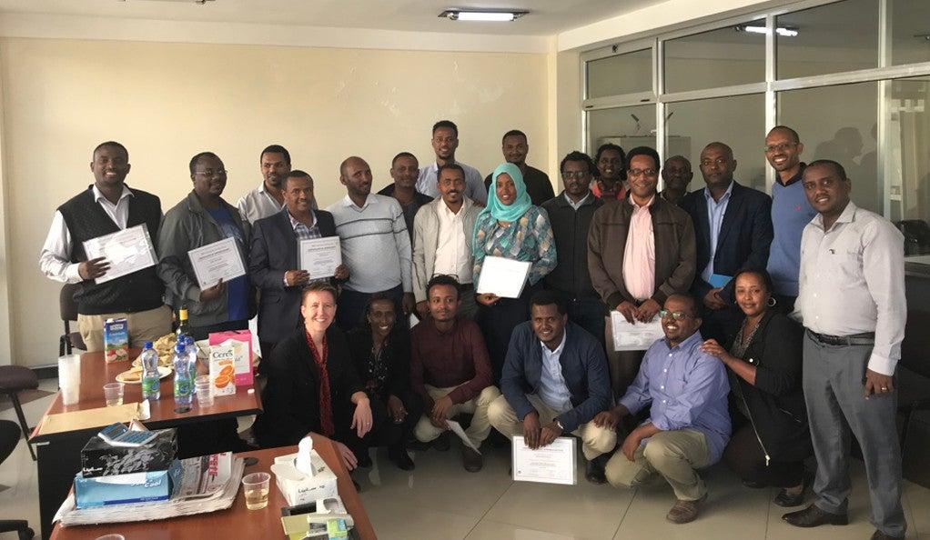 primary health care in ethiopia pdf
