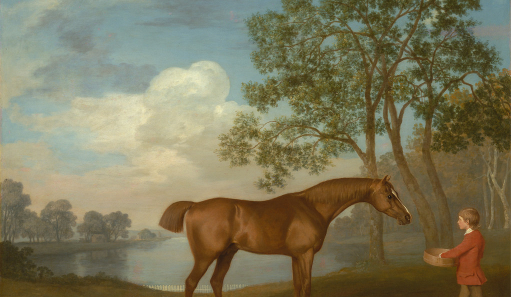 A detail from George Stubbs' Pumpkin with a Stable-lad
