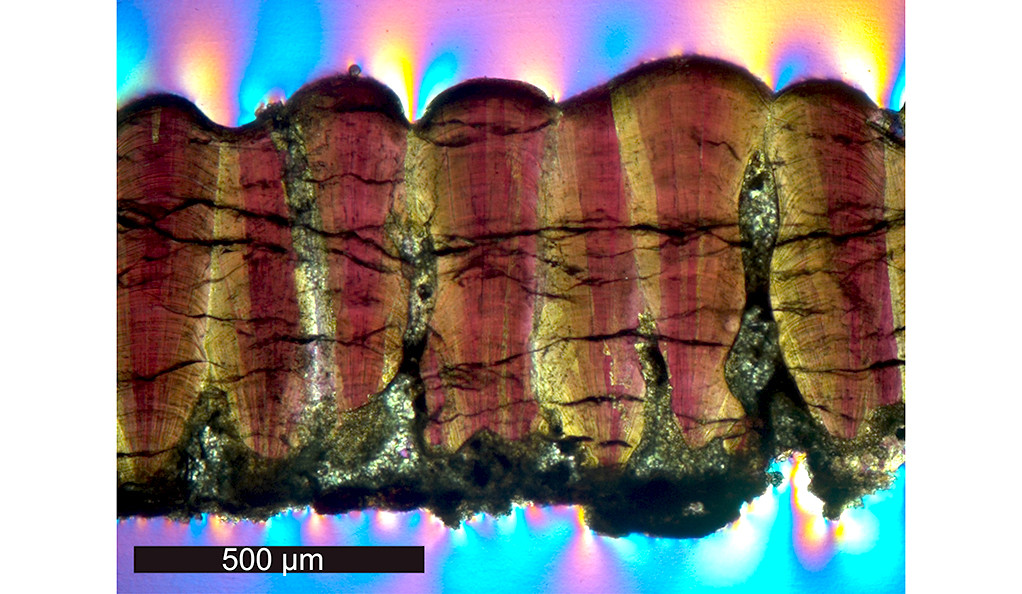 The egg cross section looks like rock layers, with biomineralized calcite crystals looking like red streaks in rock. Pink, yellow, and blue light appears in the background.