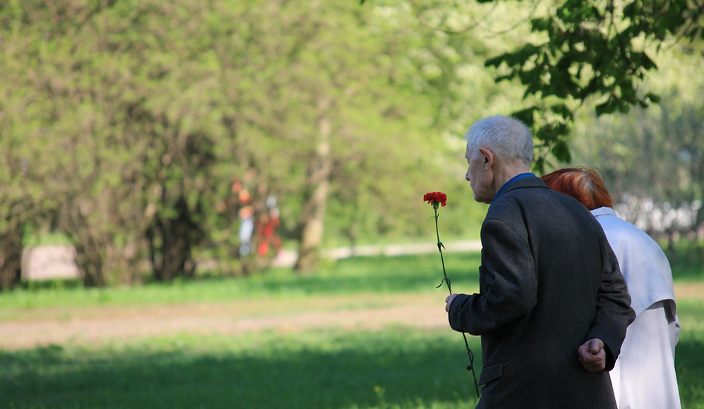 An elderly veteran holds a rose in a field during a remembrance ceremony.