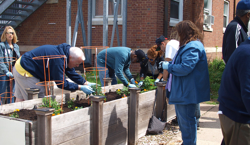 Volunteers from Yale work side-by-side with veterans to prepare and plant the West Haven VA's Blind Center vegetable garden.
