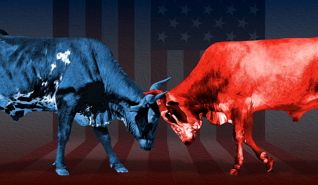 Red and blue bulls butting heads