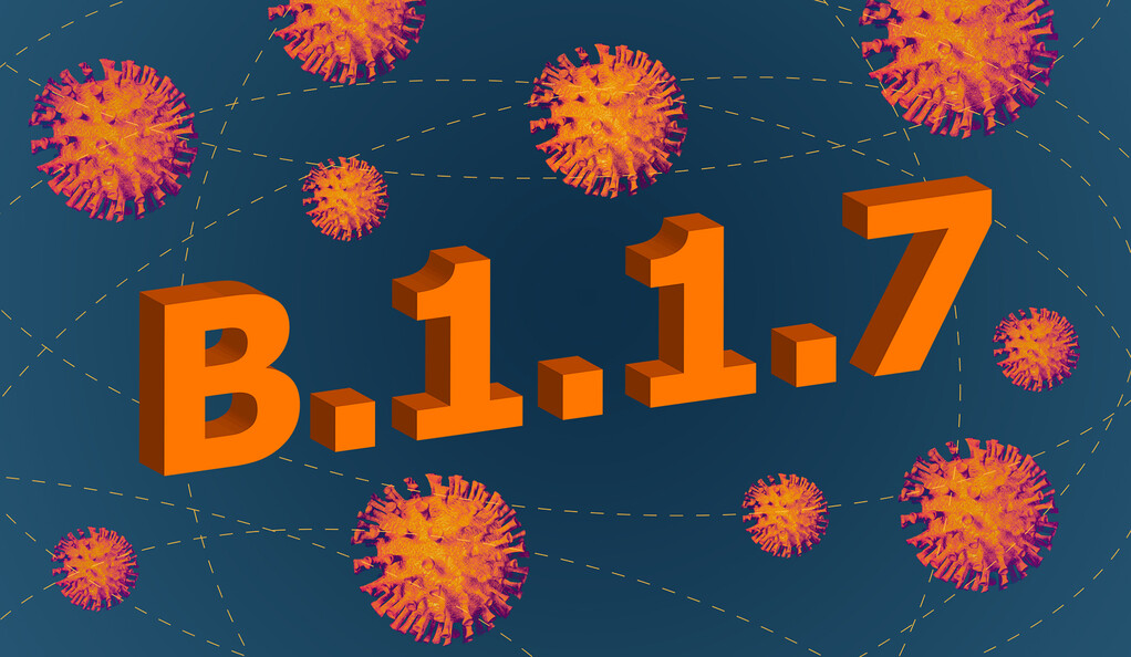 B.1.1.7