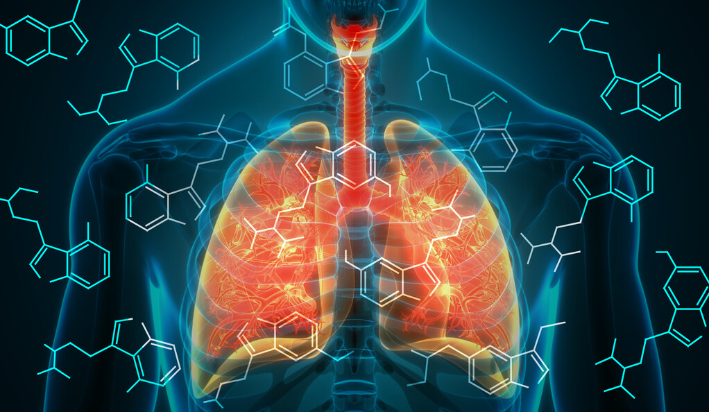 Illustration, human lungs with drug compound symbols superimposed.