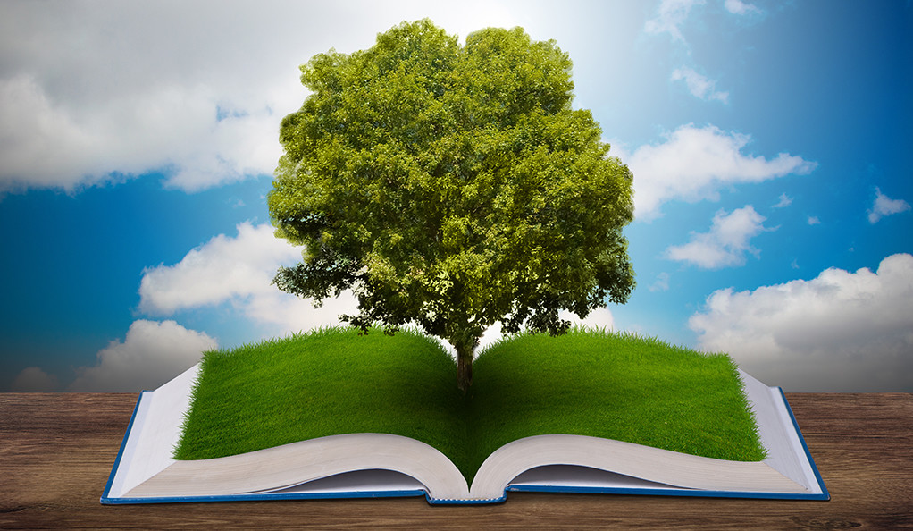 A tree grows over a book.