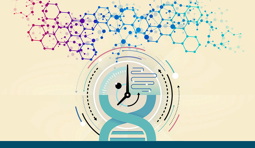 An illustration combining elements of chemical bonds, a clock, and a DNA double helix.