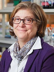 Dr. Susan Baserga