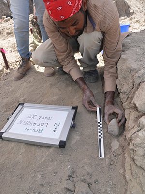 Blade Engda of the University of Poitiers in France lifts an artifact from 2.6 million year old sediment.