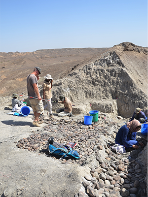 Archaeologists study the sediments at the Bokol Dora site.
