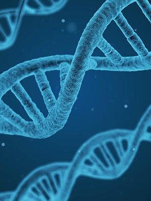 A 3D illustration of strands of DNA