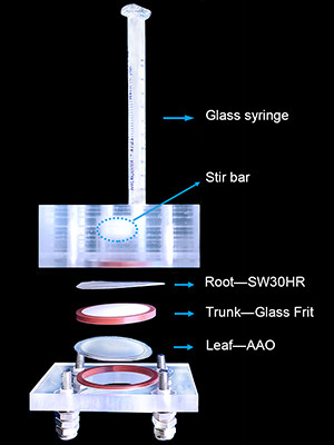 Dagram of device, with glass syringe; stir bar; root — SW30HR; Trunk — glass frit; and Leaf—AAO