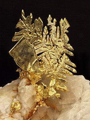 Skeletal octahedral gold crystals stacked on minor quartz crystals