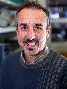Professor Eduardo A. Groisman