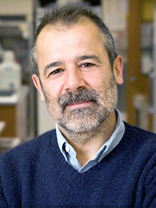Jorge E. Galán