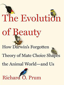 """Photo of the cover of the book titled """"The Evolution of Beauty."""""""