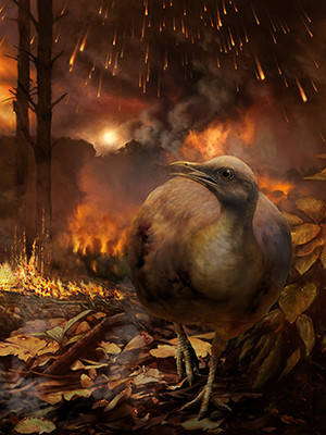 An artist's rendering of a bird fleeing from a burning forest after the asteroid strike that wiped out non avian dinosaurs.