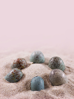 Arrangement of colored oviraptor-like eggs in an oviraptorid nest arrangement.
