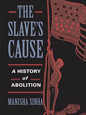 """Cover of """"A Slave's Cause"""""""