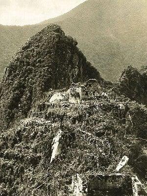 Machu Picchu overgrown with plants.