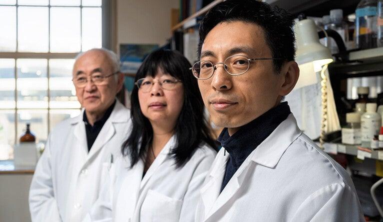 Yung-Chi Cheng, Shwu-Huey Liu, and Wing Lam