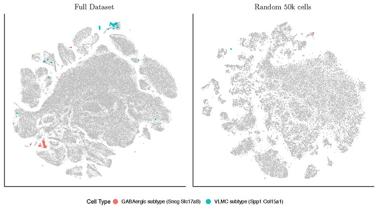 A comparison of FIt-SNE data visualization with the old t-SNE technique — FIt-SNE has much more detail and density.